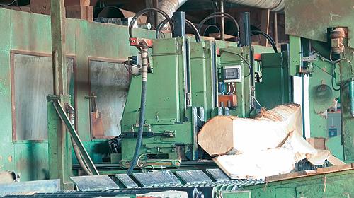 Stagionatura naturale legno Donati Legnami Spa